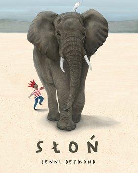 Słoń-Desmond Jenni