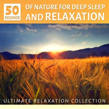 Sounds of Nature for Deep Sleep and Relaxation: Ultimate Instrumental Music  Collection, Ocean Waves, Sound of the Forest Ambience and Birds - Yoga