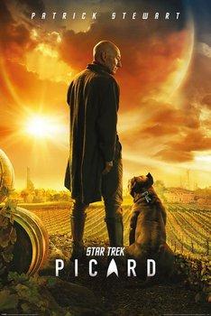 Star Trek Picard Number One - plakat 61x91,5 cm-Pyramid Posters