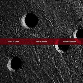 Stone To Flesh-Jansen Steve, Barbieri Richard