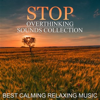 Stop Overthinking Sounds Collection: Best Calming Relaxing ...