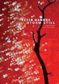 Storm Still-Handke Peter