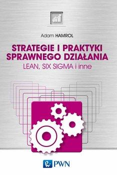 Strategie i praktyki sprawnego działania                      (ebook)