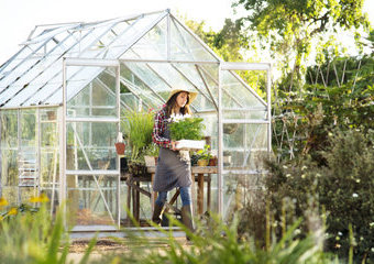 Szklarnia ogrodowa: jak zrobić szklarnię?