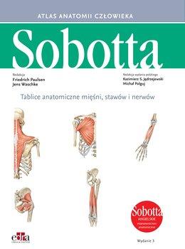 Tablice anatomiczne mięśni, stawów i nerwów. Angielskie mianownictwo-Paulsen F., Waschke J.