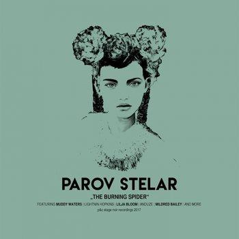 The Burning Spider-Parov Stelar