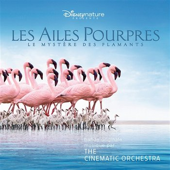 The Crimson Wing: Mystery Of The Flamingos - The Cinematic Orchestra