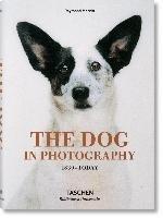 The Dog in Photography 1839-Today-Merritt Raymond