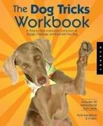 The Dog Tricks and Training Workbook-Sundance Kyra