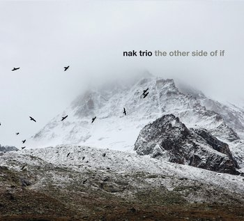 The Other Side Of It-NAK Trio