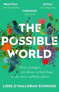 The Possible World-O'Halloran Schwarz
