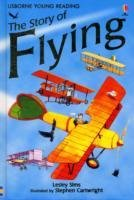 The Story of Flying-Sims Lesley