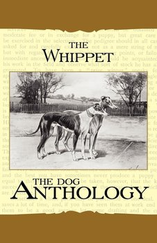The Whippet - A Dog Anthology (A Vintage Dog Books Breed Classic)-Various