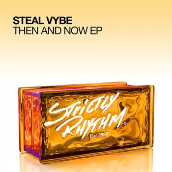 Steal Vybe - Steal Vybe EP