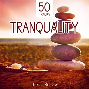 Tranquility: Just Relax - 50 Deep Meditation Tracks and Healing Sounds to Relax, Music for Spa, Study, Sleep and Well Being-Various Artists