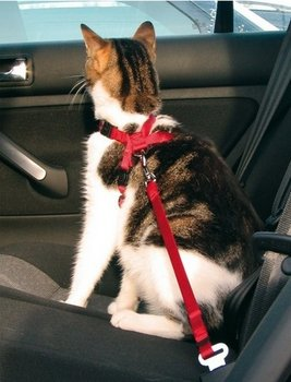 Trixie, Szelki samochodowe dla kota, czerwony, 20-50 cm/15 mm.-Trixie
