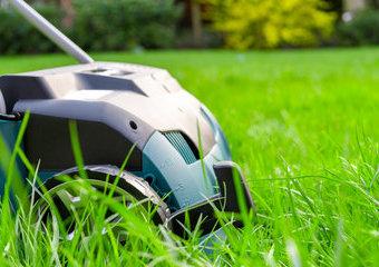 Wertykulacja trawnika: co daje? Kiedy wertykulować trawnik?