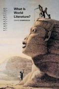 What Is World Literature?-Damrosch David