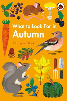 What to Look For in Autumn-Jenner Elizabeth