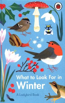 What to Look For in Winter-Jenner Elizabeth