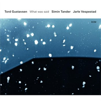 What Was Said - Gustavsen Tord