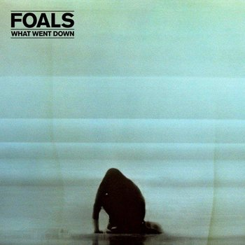 What Went Down (Deluxe Edition) - Foals