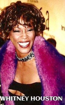 Whitney Houston Tribute drawing journal-Huhn Sir Michael