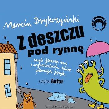 Z deszczu pod rynnę, czyli jeszcze raz o wyrażeniach, które pokazują język-Brykczyński Marcin