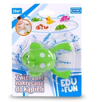 Zabawka do wody, zielona żabka blister Edu&Fun (124761)-Artyk