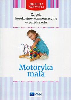 Zajęcia korekcyjno-kompensacyjne w przedszkolu. Motoryka mała-Opracowanie zbiorowe