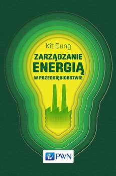 Zarządzanie energią w przedsiębiorstwie                      (ebook)