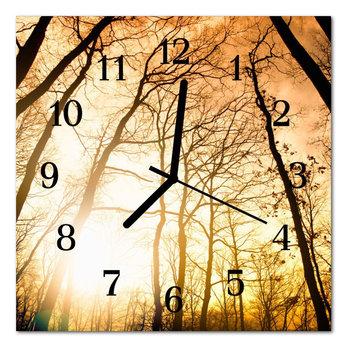Zegar szklany ścienny Cichy Drzew Natura-Tulup
