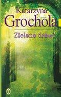 Zielone drzwi-Grochola Katarzyna