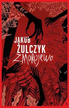 Zmorojewo-Żulczyk Jakub