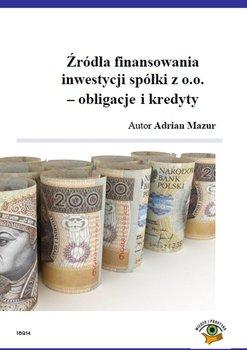 Źródła finansowania inwestycji spółki z o.o. Obligacje i kredyty                      (ebook)