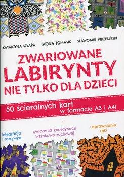 Zwariowane labirynty nie tylko dla dzieci-Szłapa Katarzyna, Tomasik Iwona, Wrzesiński Sławomir